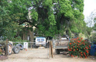 KLein Karoo - platteland plaaswerf